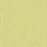<h2>Kona Cotton Solid - Zucchini</h2>